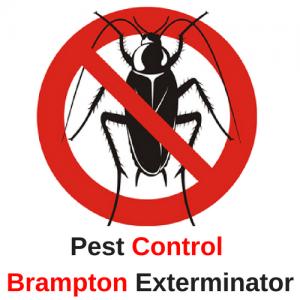 logo for Pest Control Brampton Exterminator