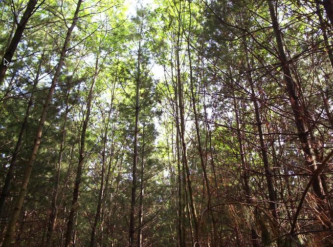 claireville conservation