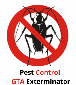 Pest Control GTA Exterminator2